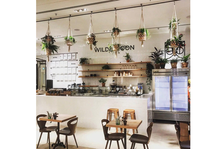 Dubai's Festival City goes wild for new cafe