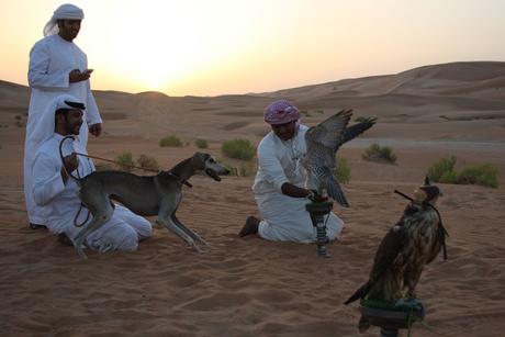 Day in the life: Qasr Al Sarab's expert falconer
