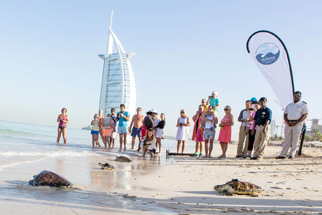 VIP guests join Jumeirah for latest turtle release