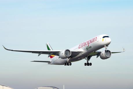 Ethiopian Airlines passenger plane crashes en route to Kenya, no survivors