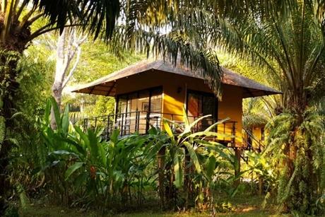 Thailand's Anurak Community Lodge wins global 2019 SKAL Sustainable Tourism Award