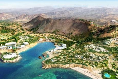 Amaala partners with Albert II of Monaco Foundation to protect marine life