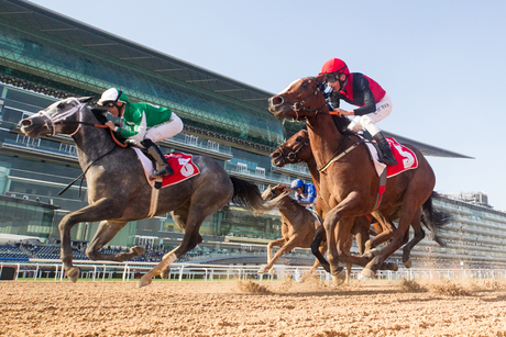 Dubai World Cup to take place without spectators