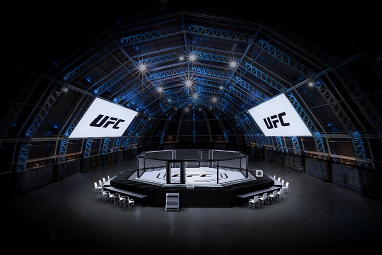 UFC event will 'show the world that Abu Dhabi is a safe place to visit'