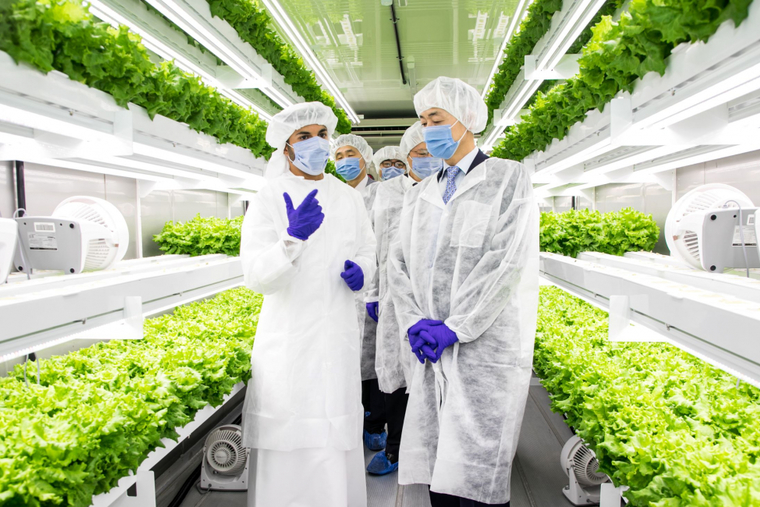 Smart Acres vertical farm officially launches in the UAE