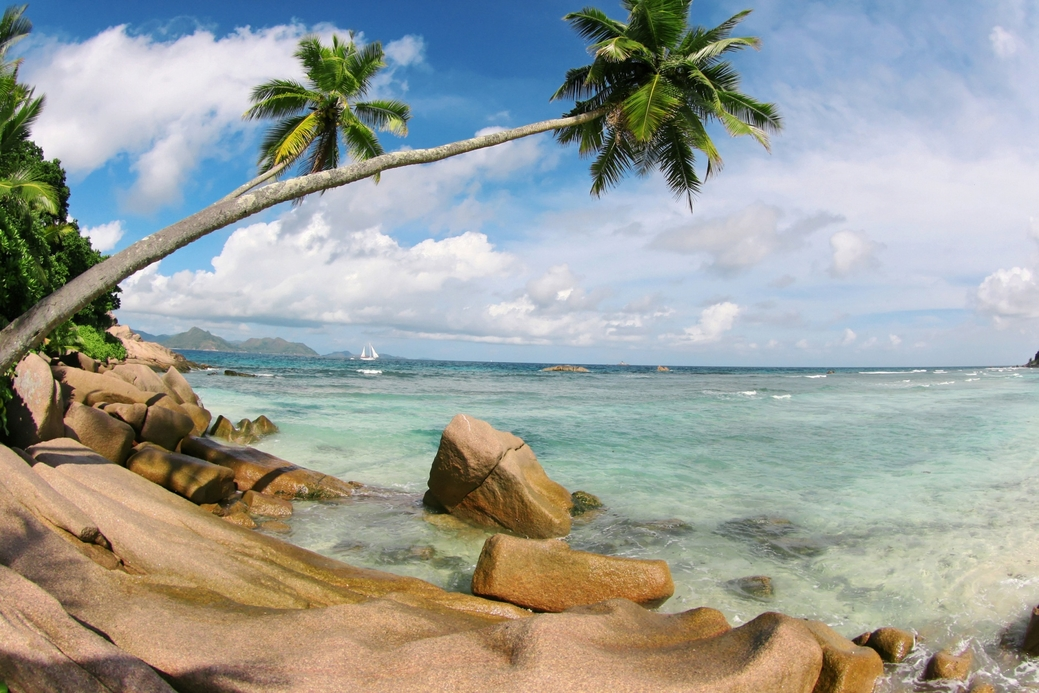 Seychelles is the next stop for the company.
