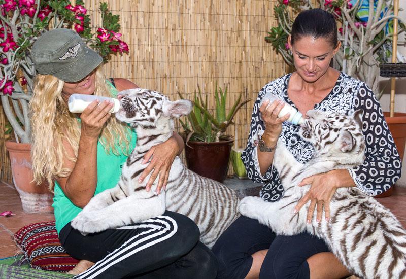 Supporting the Ras Al Khaimah Wildlife Park through Hilton's Travel With Purpose.