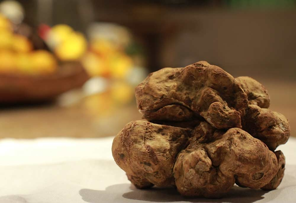 Ingredients, White truffle, Zuma dubai