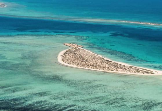 Investors, Neom, Saudi arabia, Red Sea project