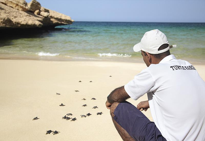 Shangri-La Barr Al Jissah Resort & Spa turtle ranger Mohammad Al Hasani