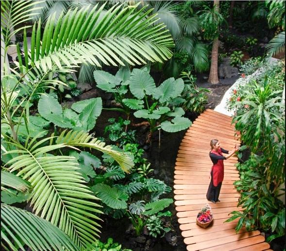 Image courtesy: Meliá Hotels International