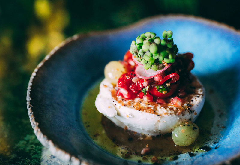 Coya explains the move will empower its diners