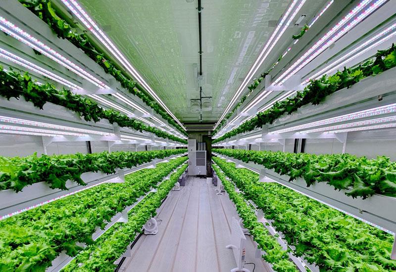 Vertical farm, Food security, Hydroponics, Smart acres, Abu dhabi
